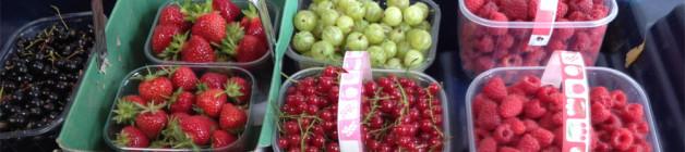 A sledge of summer fruit