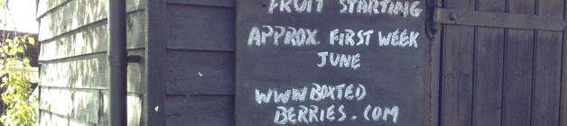 2015 fruit season starts early June